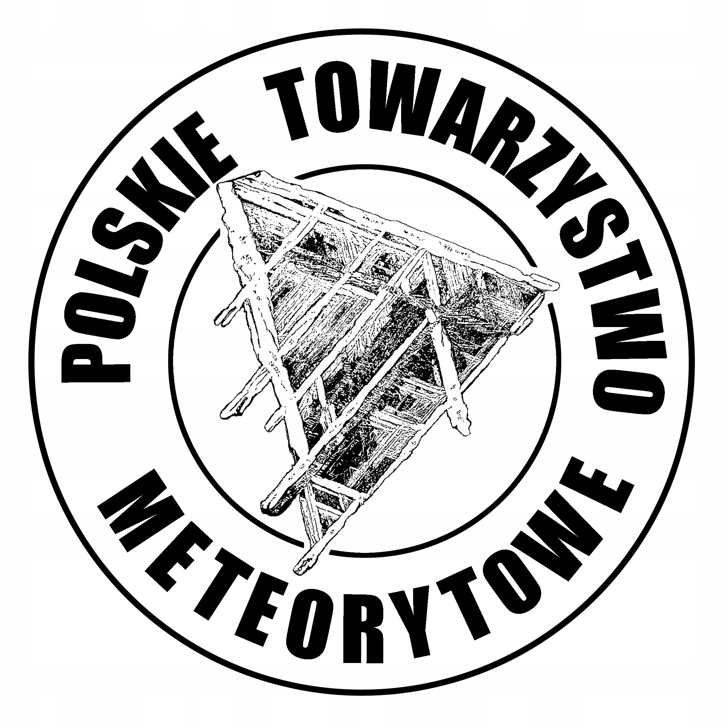 Wisiorek z meteorytem Seymchan METEORYT 2,00 g