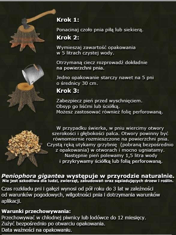 Мицелий и микориза