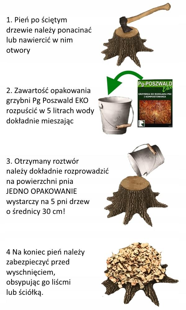 Pg Poszwald Eko Grzybnia Do Rozkładu Pni Drzew 0,6